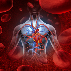 Blog blood clots and ivc filters